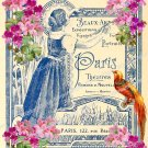 Printable Image with Vintage Paris Design, French Ephemera Digital Background