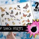 BUTTERFLY Digital Img.-Set of Digital Graphics of Butterflies-Butterfly Digital Img.