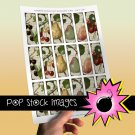 VINTAGE FRUIT-1x3 Inch Microscope Slide Collage Sheet-Glass Slide Pendants-Scrapbooking-