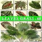 LEAVES GRASS-68 276 vintage print