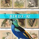 BIRDS-82 201 vintage print
