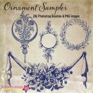 Decorative Frames Ornaments Brushes