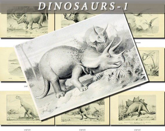 DINOSAURS-1-bw EXTINCT animals 49 black-, -white vintage print