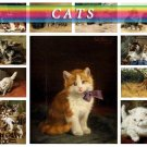 CATS PAINTINGS 84 vintage images Lion Tiger Puma Home High Res.