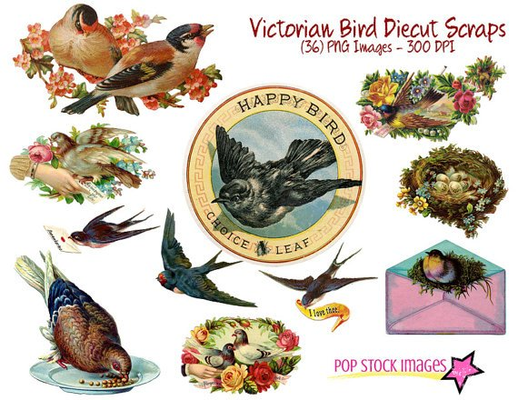 Victorian Diecut Assorted Birds-36 Fancy Diecut Bird Img.-Digital Graphics-Victorian Birds