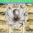 SEA ANIMALS-1 210 vintage print
