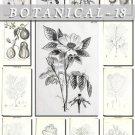 BOTANICAL-18-bw 224 black-, -white vintage print