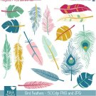 Bird Feathers Digital Clipart - Scrapbooking , card design, photo booth