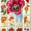 RED-2 FLOWERS 220 vintage print