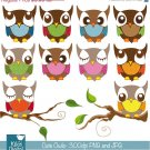 Cute Owls - Digital Clipart / Scrapbooking colorful - card design, stickers