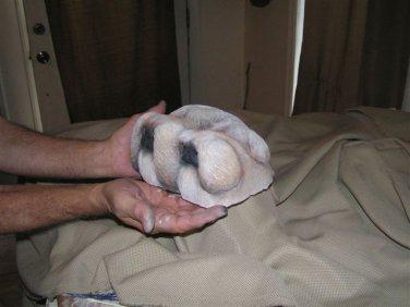 Collectible dog figurine Pekingese