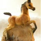 Ron Hevener Collectible Arabian Foal Figurine