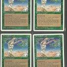 Shanodin Dryads x4 - NM - 4th Edition - Magic the Gathering