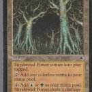 Skyshroud Forest - NM - Tempest - Magic the Gathering