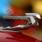 JBURTPHOTOS Original 8x10 Photographic Print - 38 Cadillac Nude Car Hood Ornament