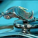 JBURTPHOTOS Original 8x10 Print of Flying Bird 1920s Radiator Cap Hood Ornament
