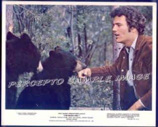 The BEARS AND I ~  '74 Color WALT DISNEY Movie Photo ~ PATRICK WAYNE