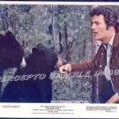 The BEARS AND I ~  '74 Color WALT DISNEY Movie Photo ~ PATRICK WAYNE
