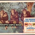 STOP! LOOK! and LAUGH! / THREE STOOGES ~  '60 3 Stooges Movie Photo Lobby Card ~  MARQUIS CHIMPS