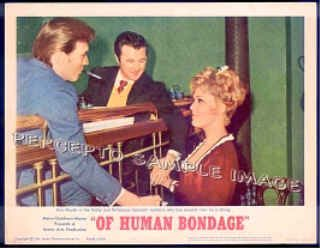 OF HUMAN BONDAGE ~  '64 Ex-Cond Color Movie Lobby Card ~   KIM NOVAK