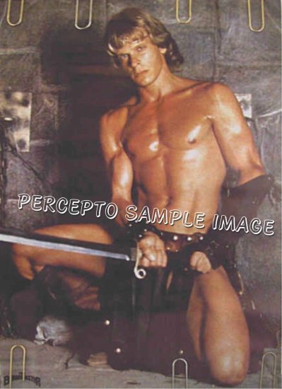 BEASTMASTER / MARC SINGER ~ Sexy Beefcake '82 Promo Poster ~ Sci-Fi / Fantasy