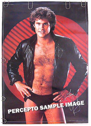 DAVID HASSELHOFF ~ 80s Baywatch SEXY BEEFCAKE SPEEDO Poster ~ AMERICA'S GOT TALENT Star
