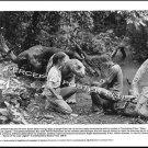 BABY Secret of The Lost Legend ~ '85 DISNEY DINOSAUR Movie Photo ~ WILLIAM KATT / SEAN YOUNG