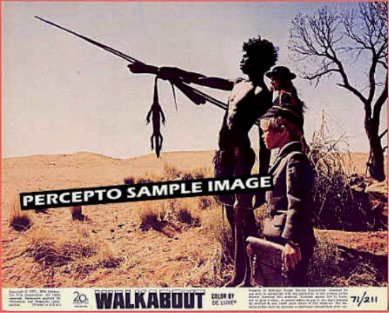 WALKABOUT ~ Ex-Cond '71 Color Movie Photo ~ JENNY AGUTTER