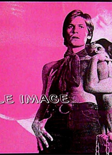 DORIAN GRAY ~ Sexy '71 AIP Half-Sheet Movie Poster ~  Gay Interest / HELMUT BERGER / HERBERT LOM