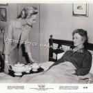 THE BIRDS ~ Orig '63 HORROR CLASSIC Movie Photo ~ ALFRED HITCHCOCK / TIPPI HEDREN / JESSICA TANDY