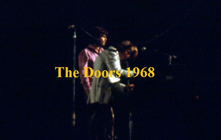 & The Doors Singer Bowl 1968 Concert Photo 5x7 Jim Morrison