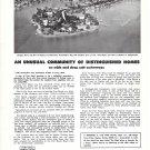 1970 Port Royal, Naples, Florida Ad- Nice Photo