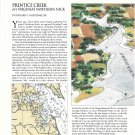 1996 Prentice Creek, Virginia Cruise of the Month Review- Nice Drawing