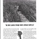 1965 Kiekhaefer Mercury Outboard Motors Ad- Photo of Florida Everglades