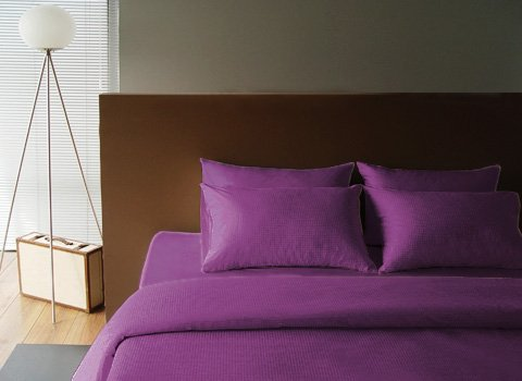 Sleeping beauty (Lavender)