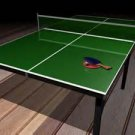 Leach Enterprises has a Ping Pong Tennis Table for Sale Online