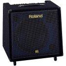 Leach Enterprises has a Roland Guitar Amplifer for Sale Online