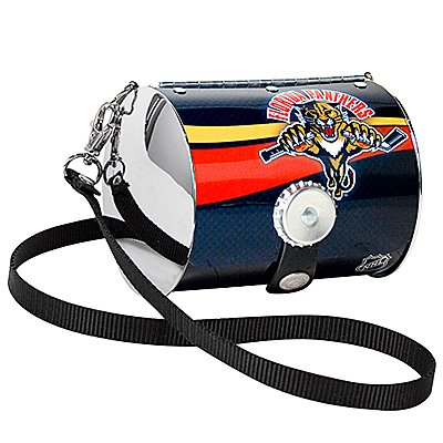 Florida Panthers Littlearth Petite Purse Bag Hockey Gift