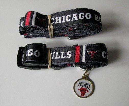 Chicago Bulls Pet Dog Leash Set Collar ID Tag Gift Size Small