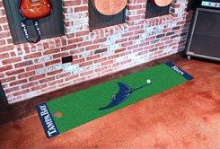 Tampa Bay Rays Golf Putting Green Mat Carpet Runner