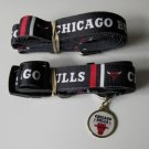 Chicago Bulls Pet Dog Leash Set Collar ID Tag XS