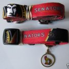Ottawa Senators Pet Dog Leash Set Collar ID Tag XS