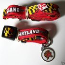 Maryland University Terrapins Pet Dog Leash Set Collar ID Tag XS