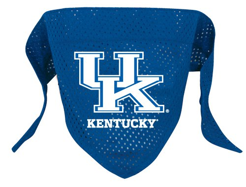 Kentucky University Wildcats Pet Dog Football Jersey Bandana S/M