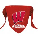 Wisconsin University Badgers Pet Dog Football Jersey Bandana M/L