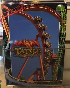 Six Flags Magic Mountain Tatsu Attraction Postcard New