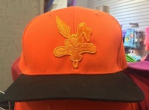 Six Flags Magic Mountain Looney Tunes Wile E Coyote Adjustable Snapback Hat New