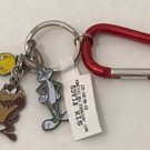 Six Flags Magic Mountain Looney Tunes Bugs Bunny Tweety Bird Taz Metal Keychain