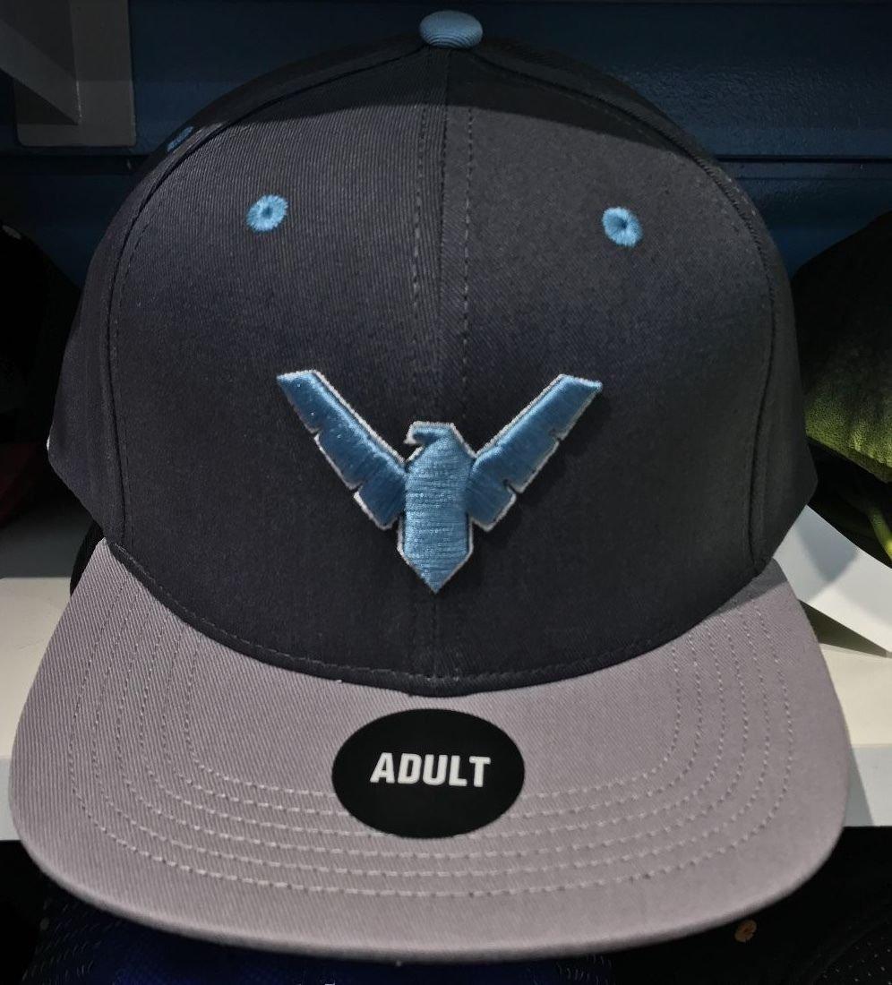 Six Flags Magic Mountain Dc Comics Nightwing Snapback Hat New