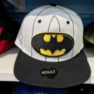 Six Flags Magic Mountain Dc Comics Batman Stitched Snapback Hat New
